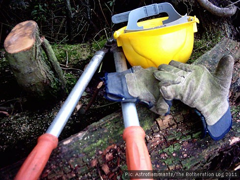 Hard hat, protective gloves and loppers on tree trunk