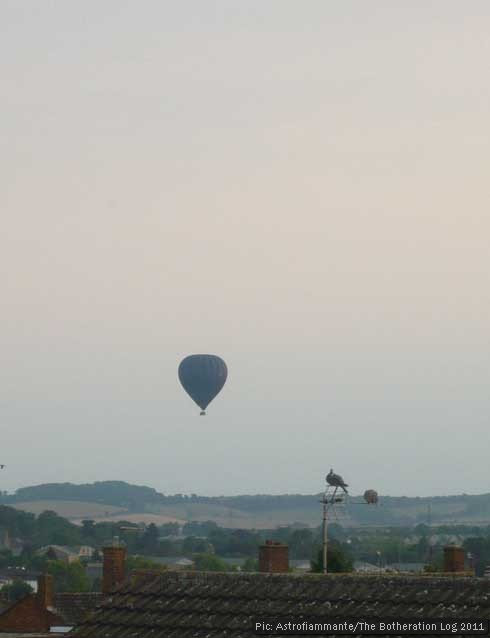 Hot air balloon watched by two pigeons