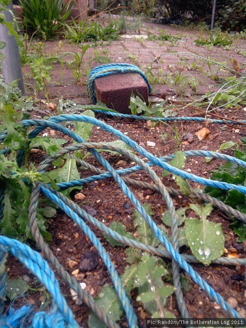 A half-brick tied to a length of blue nylon rope and left on wasteground.