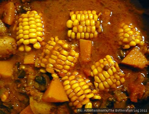 Chunks of corn on the cob simmering in curry sauce